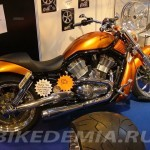 Harley-Davidson V-Rod в тюнинге